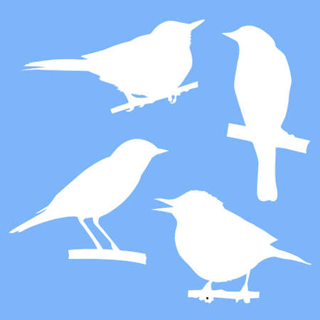 vector silhouettes of the birds sitting on branch tree Vector