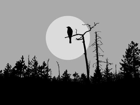 dead tree: vector silhouette bird on tree