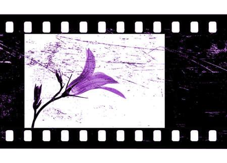 camera film Stock Photo - 8041686