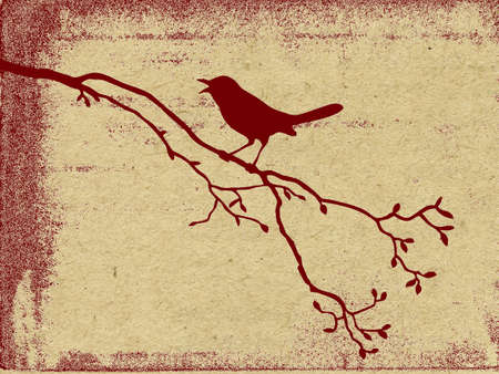 grunge vector: vector grunge background Illustration
