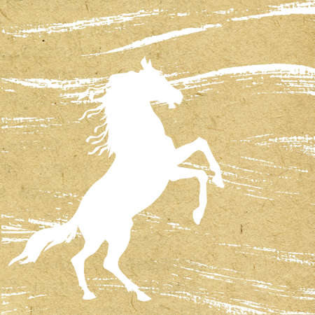 old horse: grunge background