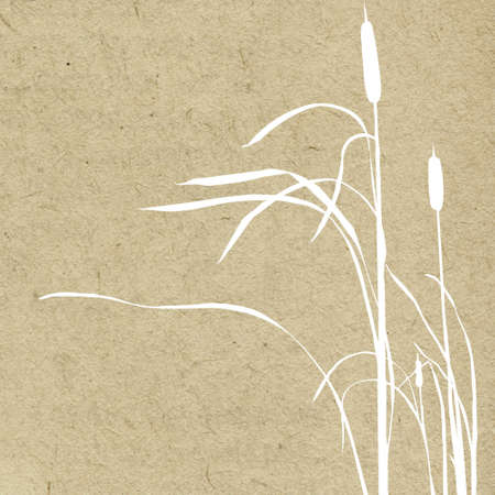 bulrush: grunge background