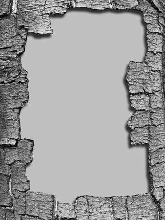 cortex: decorative frame from cortex of the wood cortex Stock Photo