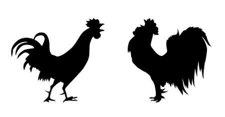 animal cock: silhouette del Gallo su sfondo bianco Vettoriali