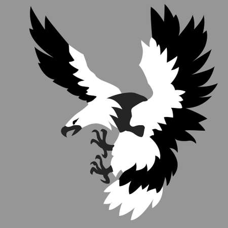 silhouette of the ravenous bird   Vector