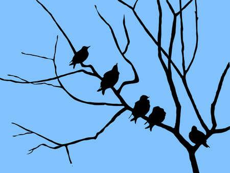 silhouette étourneau sur branche d'arbre Vecteurs