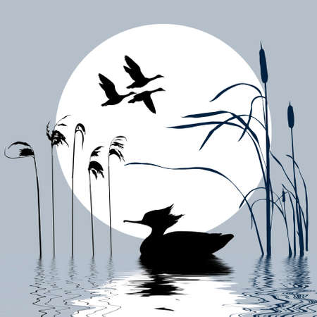 birds lake: drawing flying birds on background sun Illustration