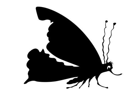 silhouette butterfly on white background Stock Vector - 8768684
