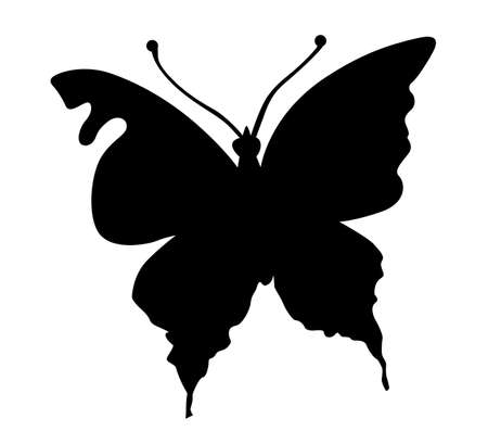 silhouette butterfly on white background Stock Vector - 8768659