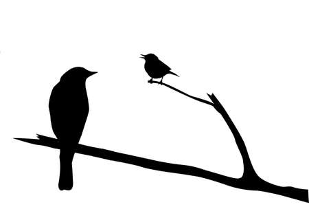 vector silhouette of the bird on branch Stock Vector - 8922507