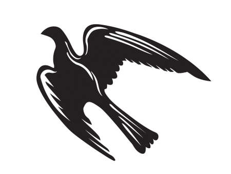 vector silhouette of the ravenous bird on white background Vector