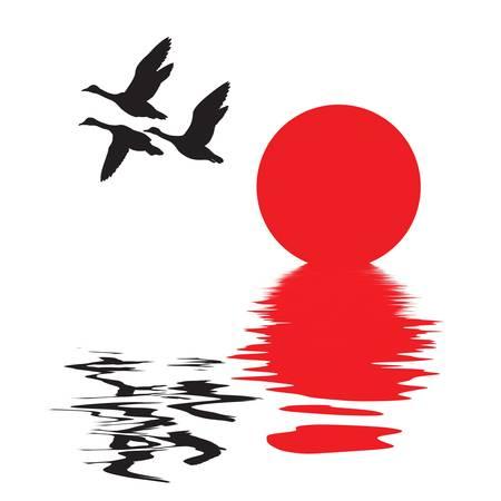 migraci�n: silueta vector volando patos sobre fondo blanco