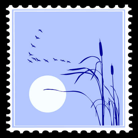 vector silhouette of the birds on postage stamps Vector