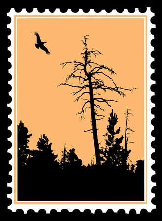 las aves que vuelan en sellos postales de silueta