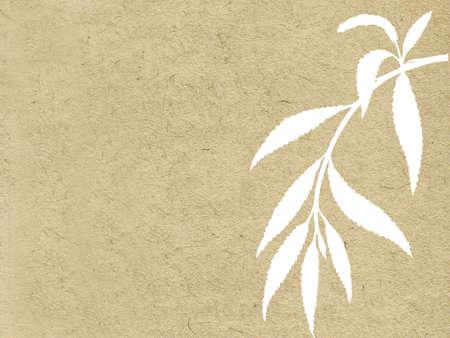 osier: branch osier on grunge background