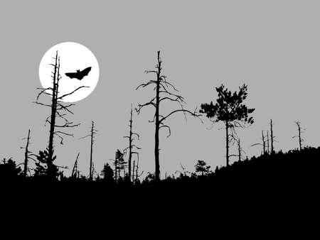 perish: silhouette bat on moon background