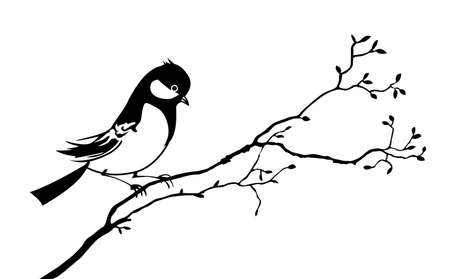 vector silhouette of the bird on branch tree Stock Vector - 9166059