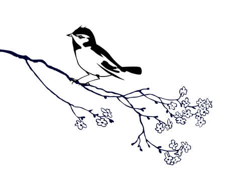 tomtit: vector silhouette of the bird on branch tree