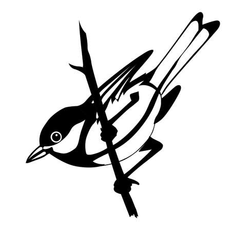 tomtit: vector silhouette of the bird on white background