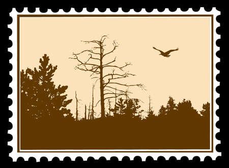 silueta vector del ave en sellos postales Ilustración de vector