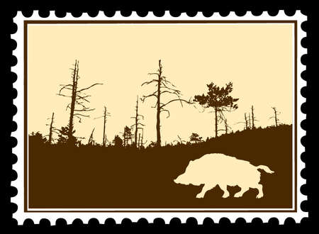 vector silhouette wild boar on postage stamps Vector