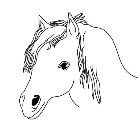 vector silhouette of the head horse on white background Vector