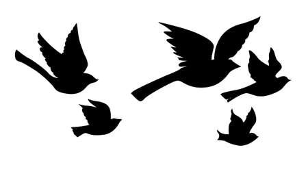 pajaro caricatura: silueta vector volando aves sobre fondo blanco