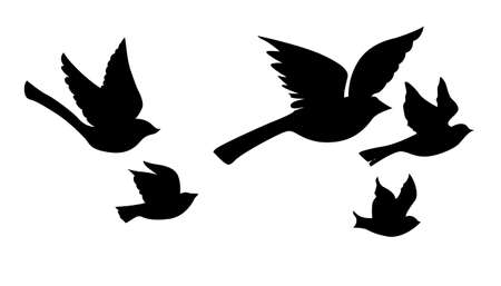 birds silhouette: vector silhouette flying birds on white background