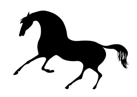 silhouette horse on white background Vector