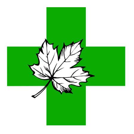 maple leaf on green cross Stock Vector - 9294528