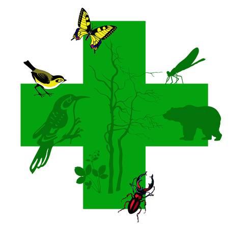 tomtit:  silhouette animal on green cross Illustration