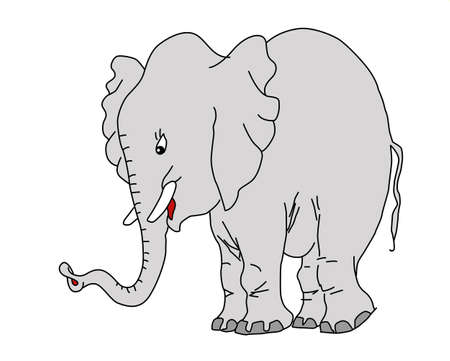 drawing elephant on white background Vector