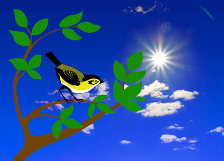 bird on tree photo