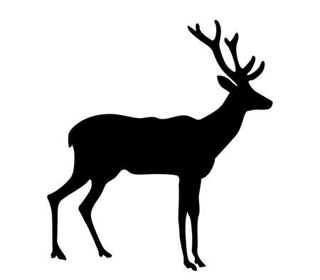 silhouette deer on white background  Illustration