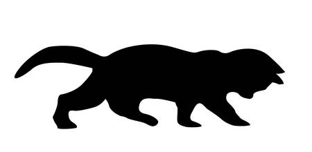 silhouette cat on white background Vector