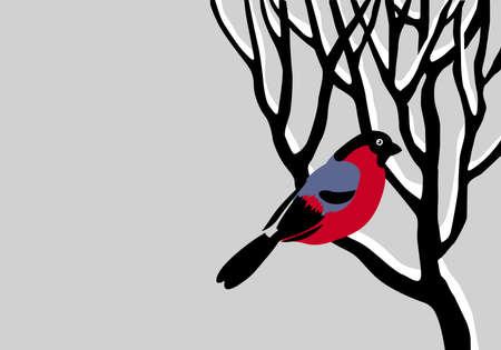 bullfinch on tree Stock Vector - 9492637