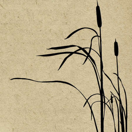bulrush: vector grunge background Illustration