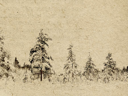 spruce thread:  grunge background Illustration