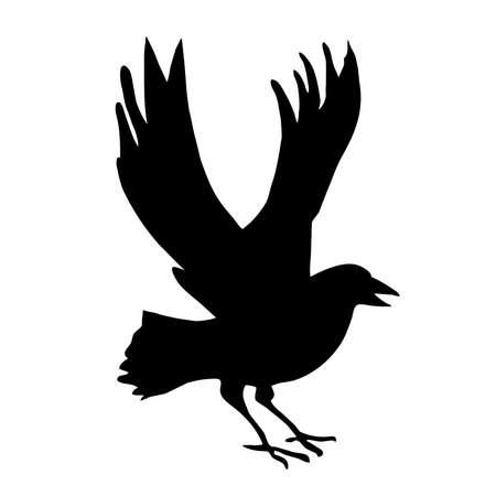 silhouette ravens on white background photo