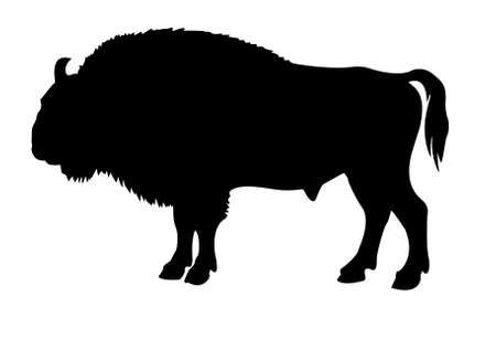 silhouette of the buffalo on white background Stock Photo - 10877367