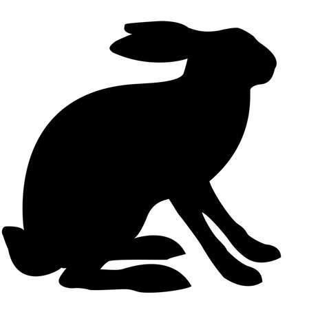 liebre:  liebre ilustración aislada sobre fondo blanco