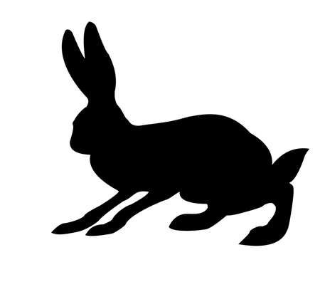 silhouette of the rabbit isolated on white background photo