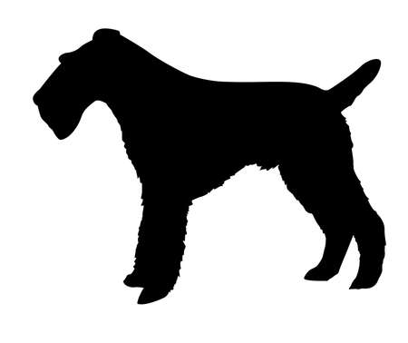 silhouette of the fox terrier isolated on white background photo