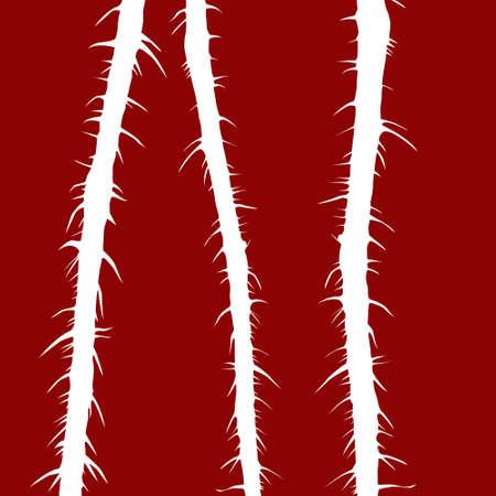 illustration stalk wild rose on red background illustration