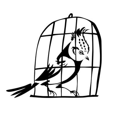 hutch: vector goldfinch in hutch on white background Illustration