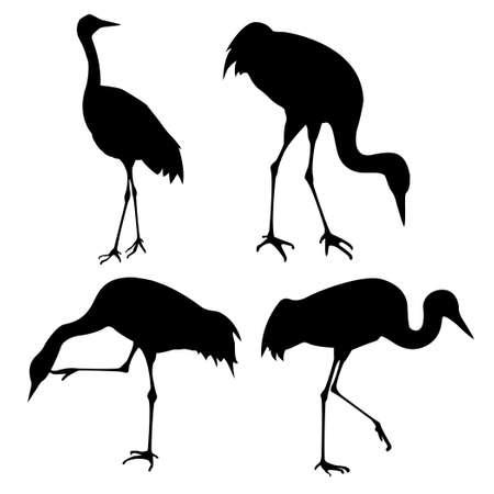 crane bird: silhouette of the cranes on white background Stock Photo