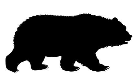 silhouette bear on white background Vector