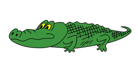 drawing green crocodile on white background Vector