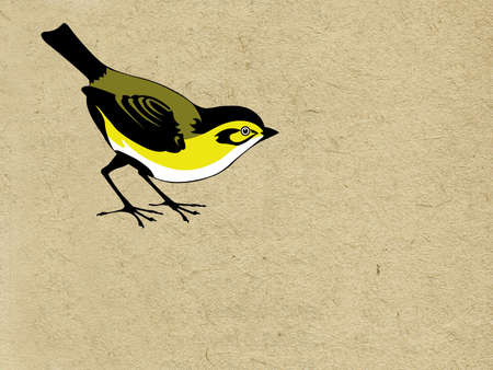 vector tomtit on grunge background