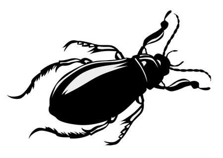 Vektor-Silhouette Bug auf weißem Hintergrund